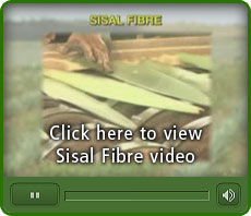 London Sisal Association Video